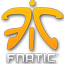 логотип fnatic
