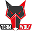 MTS GameGod Team Wolf