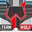 MTS GameGod Team Wolf