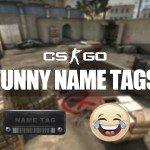 CS:GO Funny Skin Names